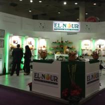 EL NOUR (Hace 2013)